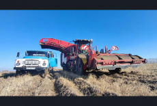 Новосибирские аграрии впервые за десятилетие намолотили 3 млн тонн зерна и продолжают уборочную