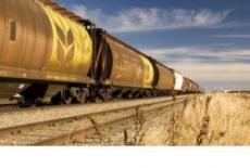Около 700 тысяч тонн зерна отгружено с элеваторов Новосибирской области в 2018 году