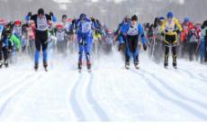 Новосибирская область готова к центральному старту «Лыжни России»