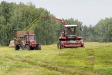 Губернатор поблагодарил аграриев за ударные темпы кормозаготовки
