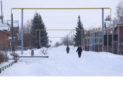 Новосибирская область стала первой в стране по числу поддержанных Минсельхозом России проектов развития села