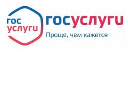 Новосибирская область заняла шестое место в рейтинге регионов по качеству предоставления электронных госуслуг