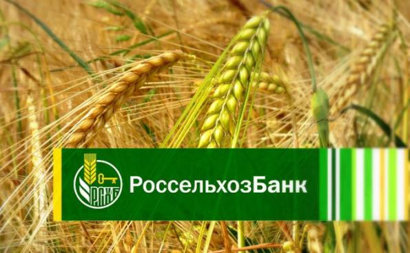 Россельхозбанк направил 3,8 млрд рублей на развитие свинокомплекса в Новосибирской области