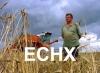 Новосибирские плательщики единого сельхозналога могут получить освобождение от уплаты НДС